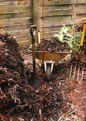 kompost-13.jpg