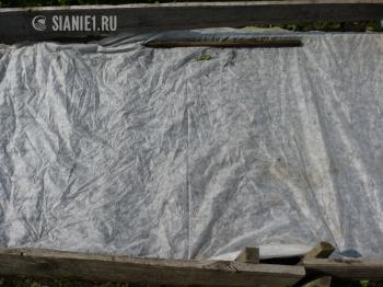 https://sianie1.ru/upload/resizer2/static/3/3c5/3c5e99cc1eea6202f6f6a056ff1d3d58.jpg